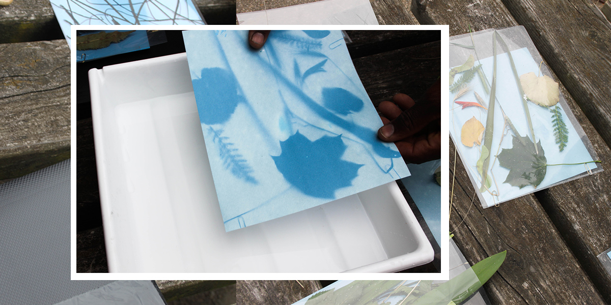 Collecting natural materials for our Cyanotype experiments